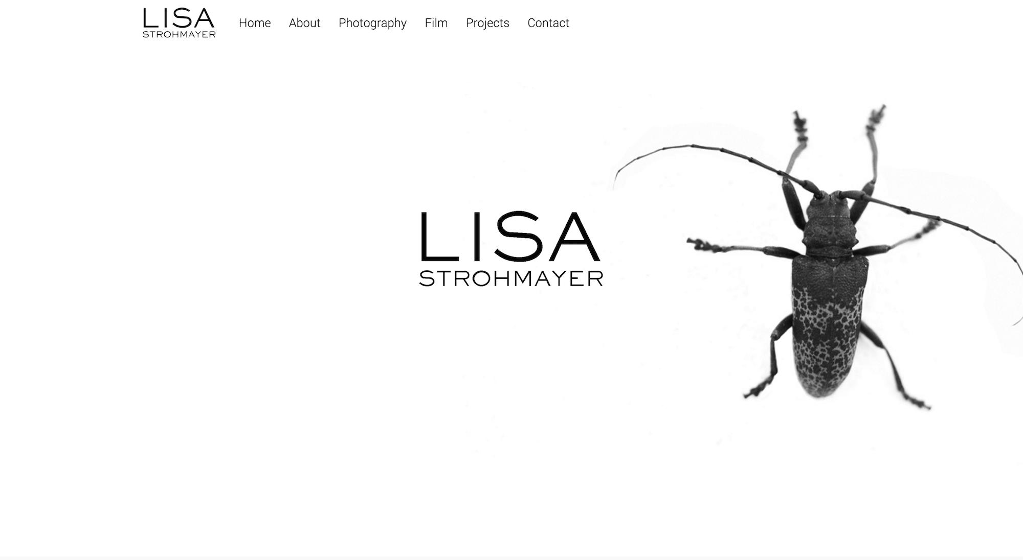 Lisa Strohmayer   Capturing the Individual