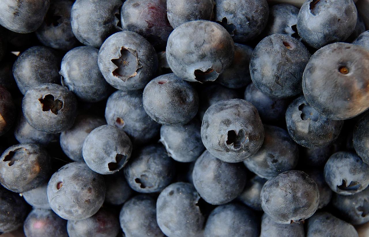 blueberry-3357568_1280